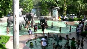 Dusit Zoo II - Bangkok Video