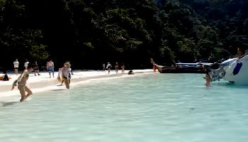Monkey Beach oder Yong Kasem Beach PhiPhi Island - Krabi Video