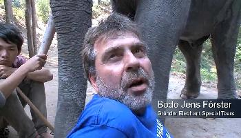 Bodo Förster - Elephant Special Tours - Chiang Mai Video